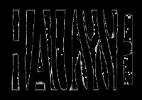 Hausse logo